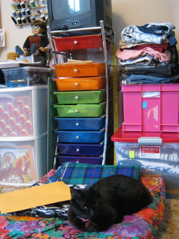 My project boxes, great for keeping everything organized. To the left are my pattern drawers and to the right is a pile of discarded clothing that has recreation potential.