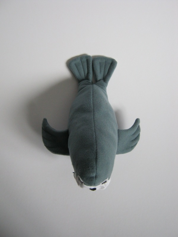 Walrus (4)
